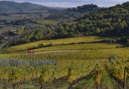 Tuscany Wine Journal, Day Four: Chianti Classico