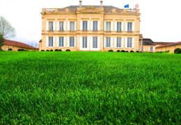 Bordeaux 2015 En Primeur: Campaign Summary