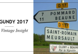 Burgundy 2017 Early Vintage Insight