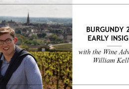 The Wine Advocate's William Kelley Shares his Burgundy 2017 Early Insights