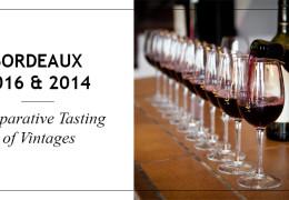 Bordeaux 2016 & 2014 – Retrospective tastings and a comparison of vintages