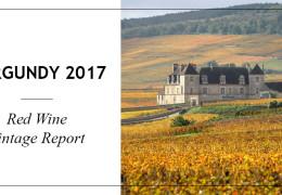 Vintage Report - 2017 Red Burgundies: tension, verve and terroir transparency