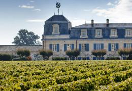 Bordeaux 2018 - F+R visits Bordeaux for an early vintage insight