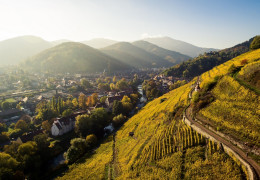 24 Hours in Alsace
