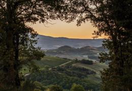 Poggio di Sotto - Montalcino's Cult Wine