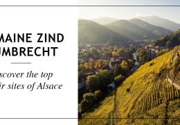 Domaine Zind Humbrecht - Discover the top terroir sites of Alsace