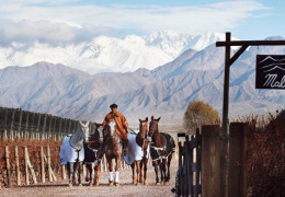 The Cheval Blanc team invests their savoir-faire into Cheval des Andes