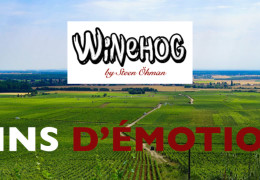 Winehog's Early Impressions on the Burgundy 2018s