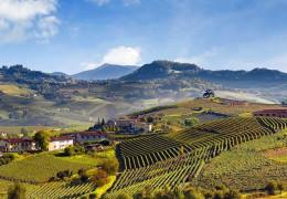 Produttori del Barbaresco - The Single Vineyard Riservas