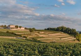Bordeaux 2020: top-value buys