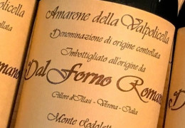 Wines Not to Miss in February 2020
