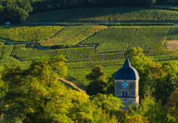 24 Hours in... Burgundy