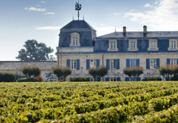 Early Insight on Bordeaux 2019