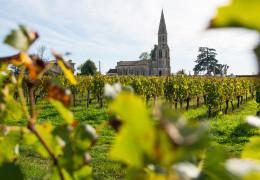 Bordeaux 2020: breaking it down