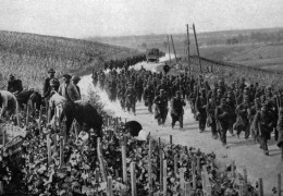 A Year in Wine: 1914
