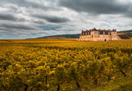 The Wine Advocate's William Kelley shares his Burgundy 2018 Early Insight