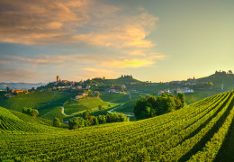 Your definitive guide to Barolo