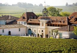 Chateau Angelus - Premier Grand Cru Classe A