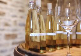 Burgundy 2019: the whites