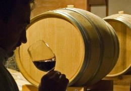 Rosso Della Centa - The First Great Friuli Red