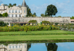 2011 Bordeaux: Great News for Lafite Lovers