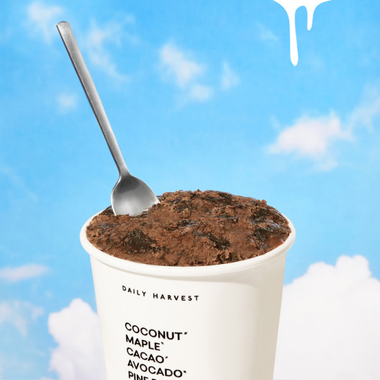 Chocolate vegan dairy-free ice cream from Daily Harvest.