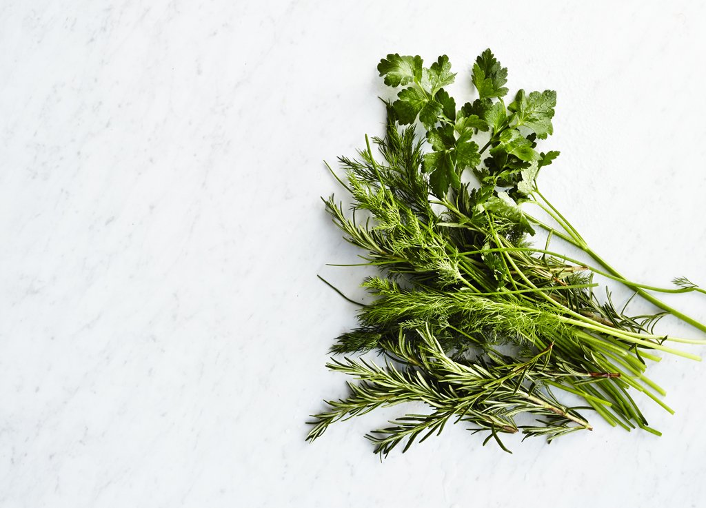 how-to-dry-fresh-herbs