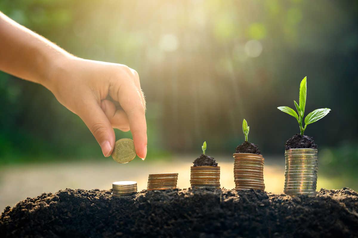 деньги растут с растениями