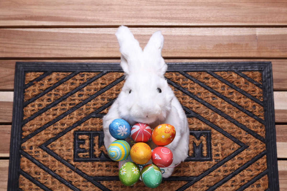 The Best Easter Bunny Answers to Kids' Questions | CafeMom.com