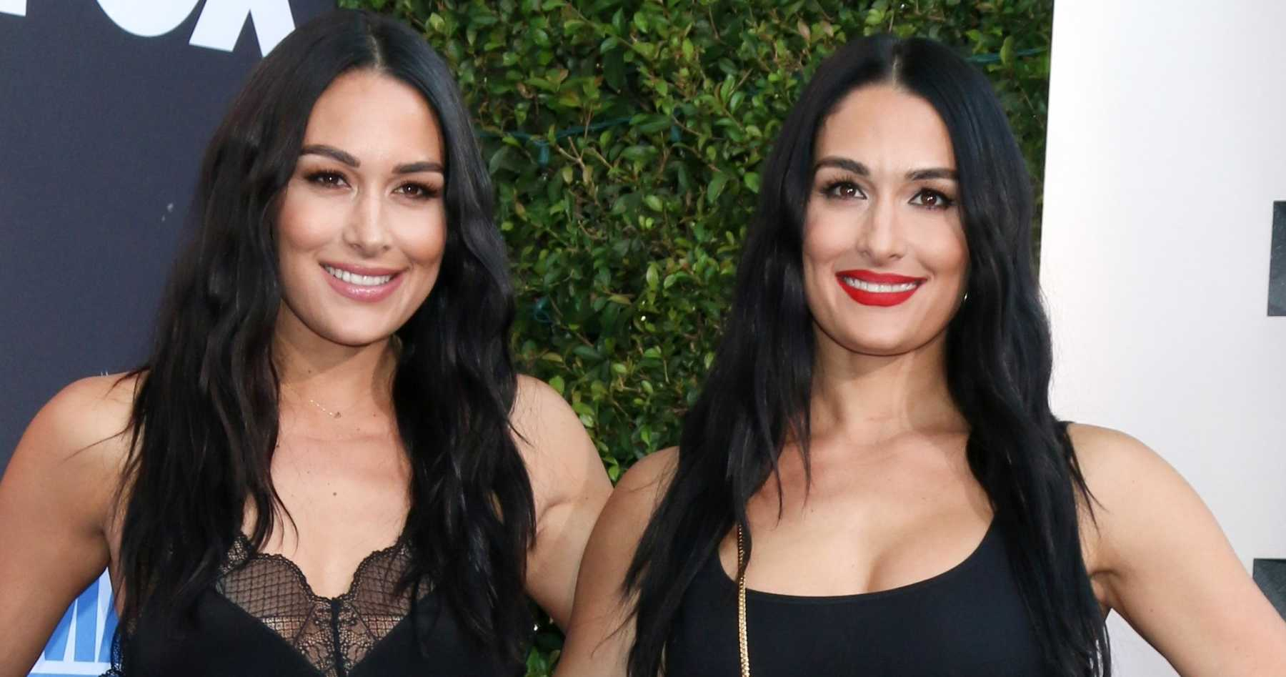 Brie and Nikki Bella go completely nude in maternity