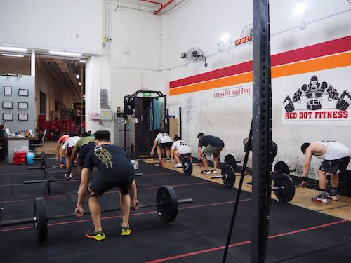 CrossFit Red Dot Article Photo Business Resized