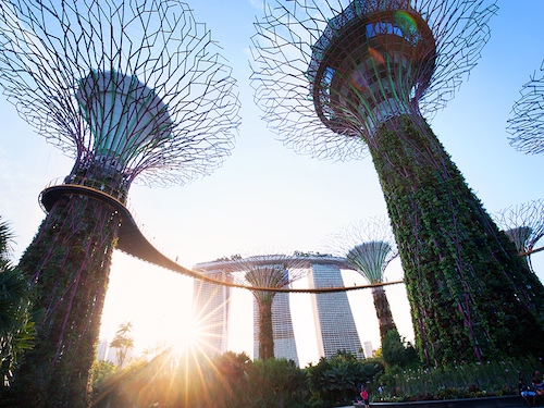 Gardens by the Bay Article Photo STB Resized