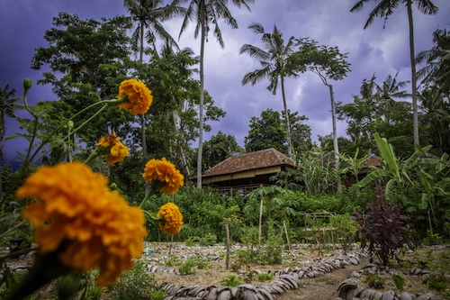 Moksa Ubud Article Photo Business 1 Resized