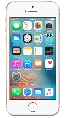 Apple iPhone SE 16GB Gull