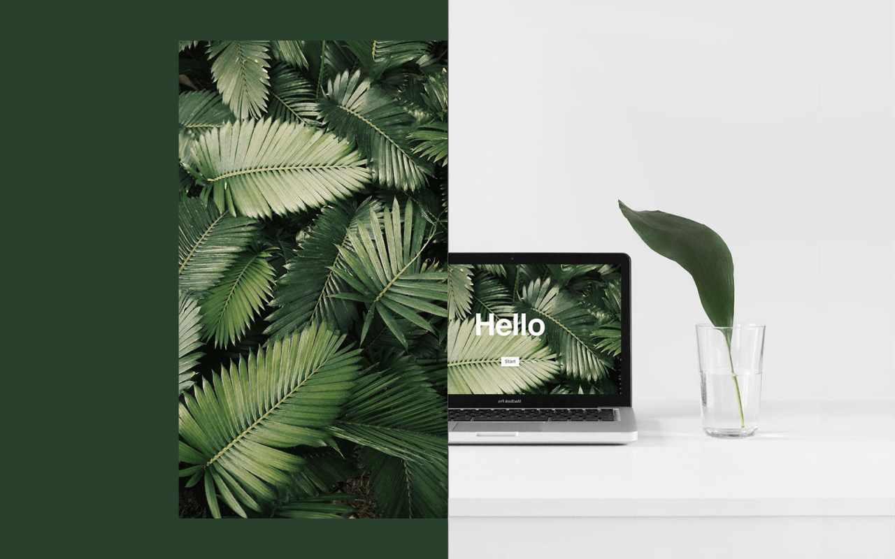 How Unsplash can help make your form look less like forms