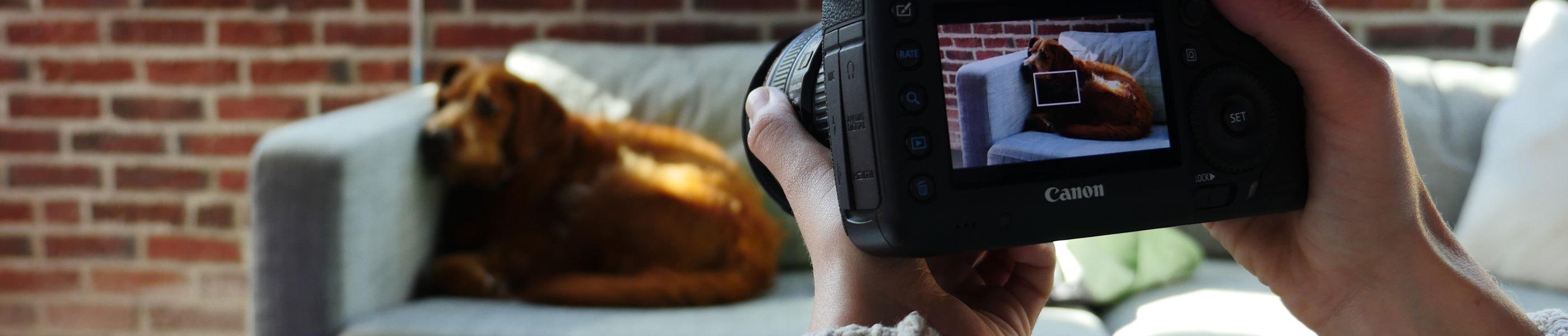 Shooting Stable Handheld Video Footage - Wistia Blog