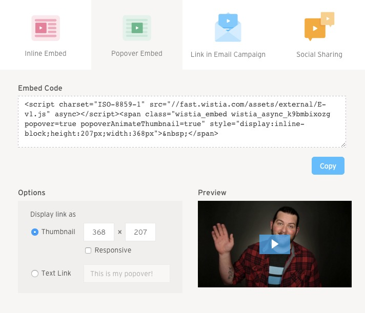 screenshot of popover options in embed and share modal