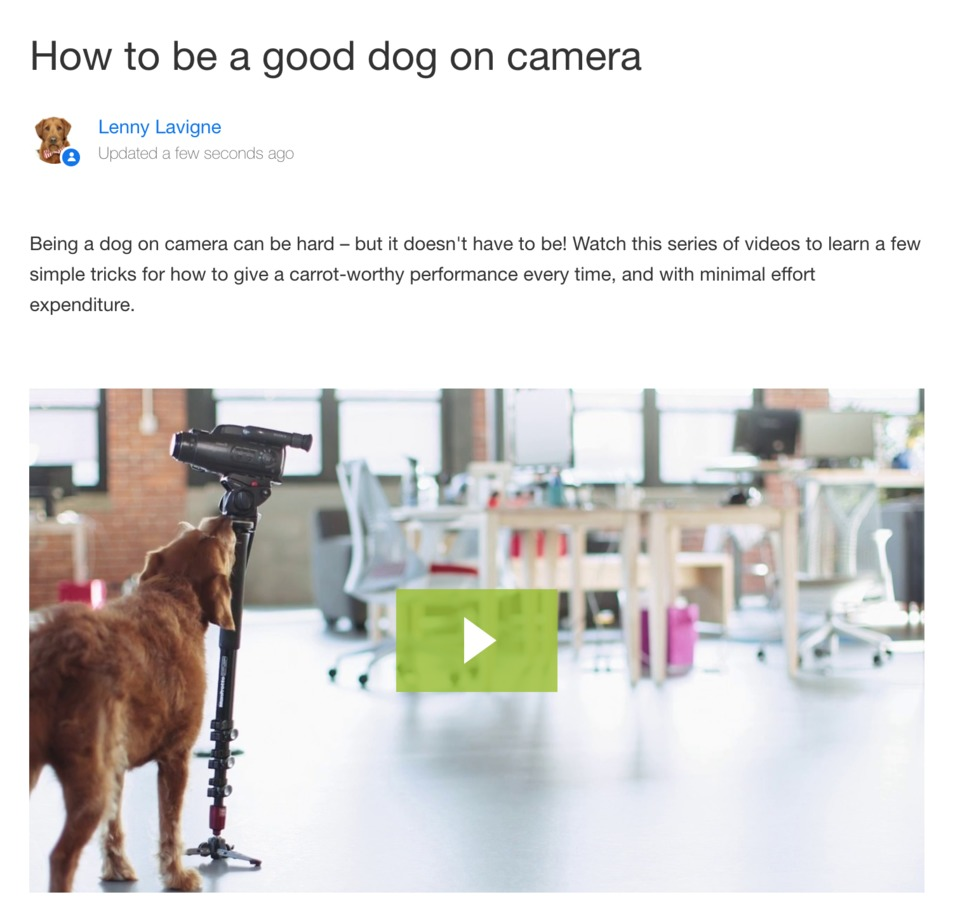 how to be a good dog post