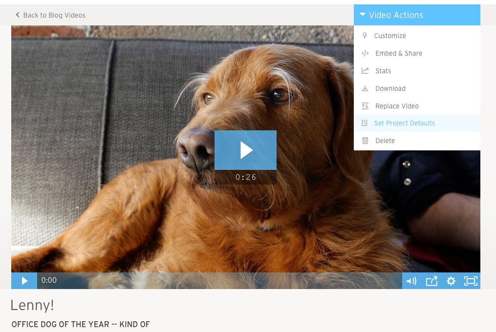 Video Actions menu set project defaults
