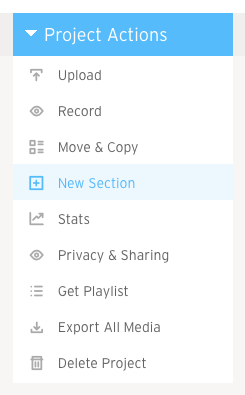 Project Actions New Section option
