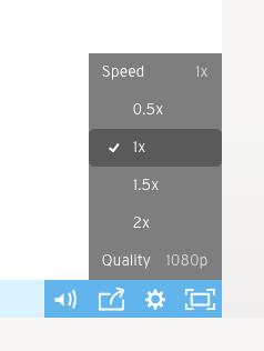 screenshot of video speed controls