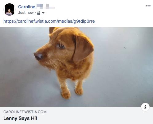 Facebook video status