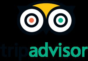 TripAdvisor_logo_online_hotel_bookings