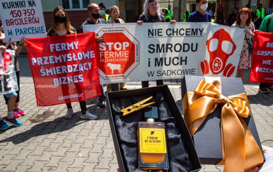 Greenpeace Polska/Twitter