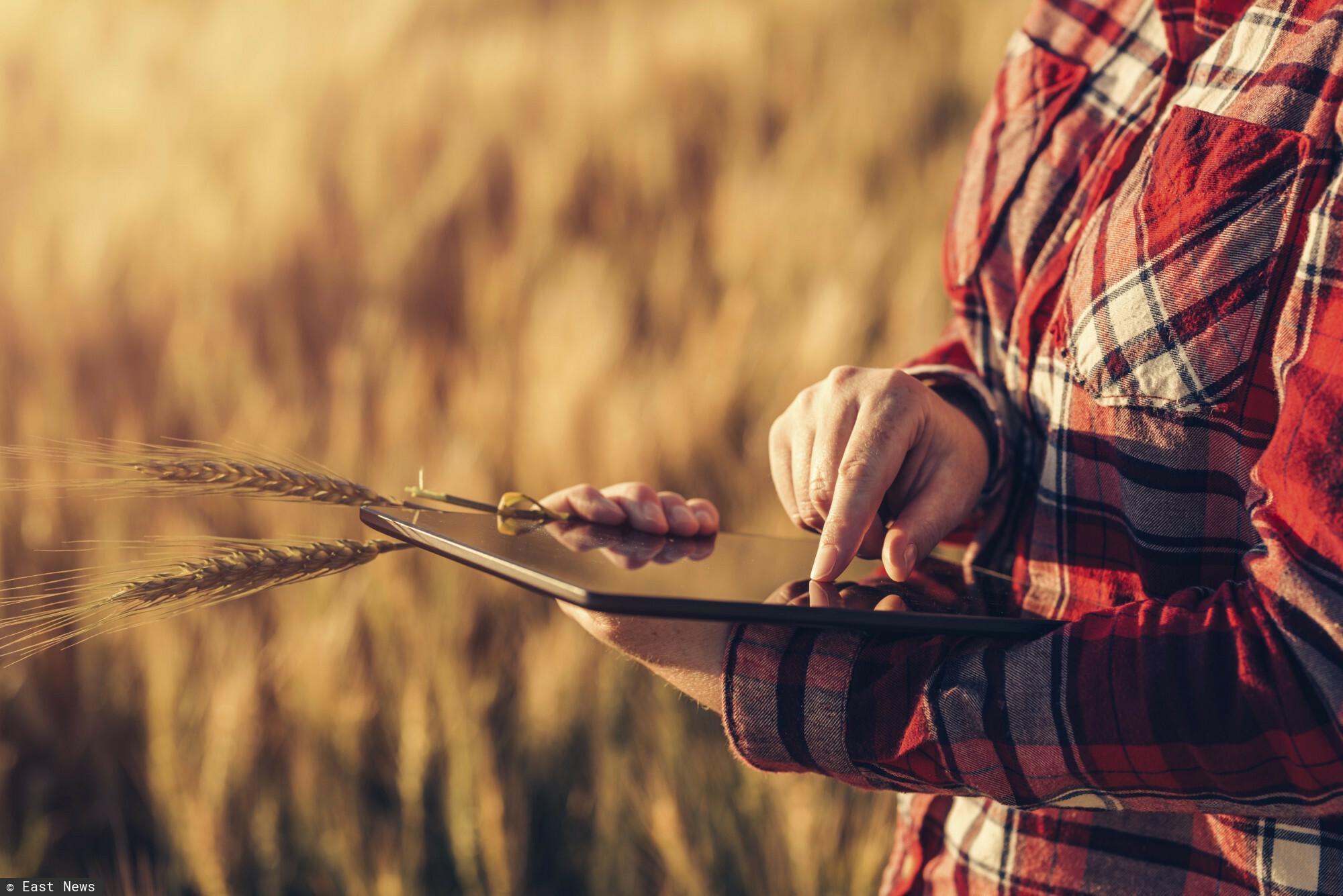 Ministerstwo rolnictwa - cyfryzacja rolnictwa