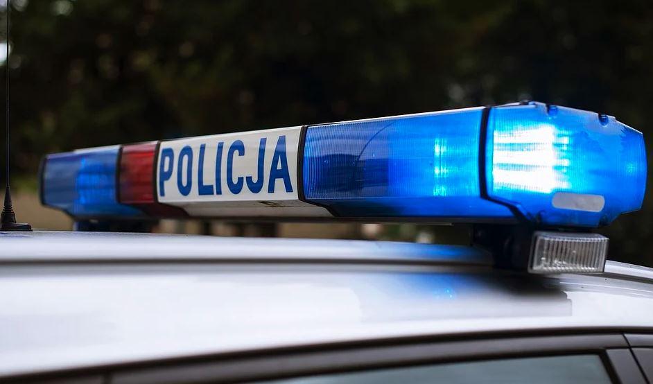 policja - piła