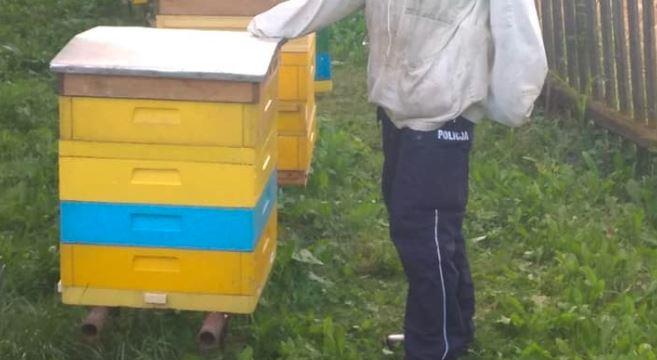 policja - pszczoły