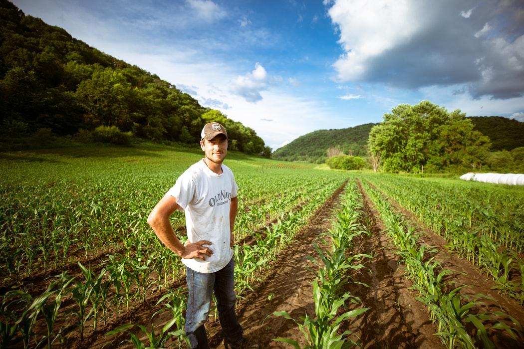 obostrzenia rolnicy