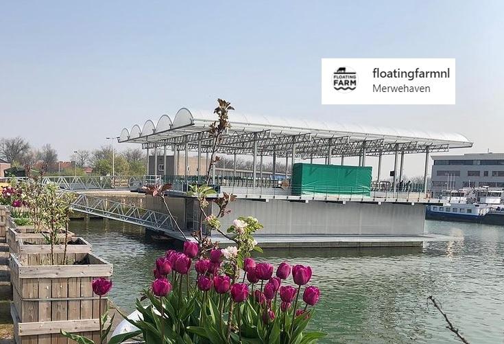 floating farm niderlandy