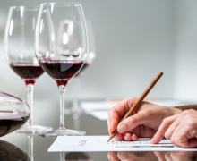 Wine 101 & Beyond: Guides for Beginners & Experts